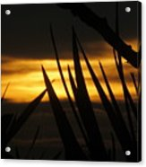 Watch More Sunsets Acrylic Print
