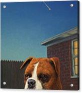 Watchdog Acrylic Print by James W Johnson