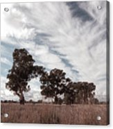 Watching Clouds Float Across The Sky Acrylic Print