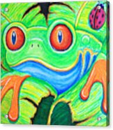 Watching You Red Eyed Tree Frog Acrylic Print by Nick Gustafson