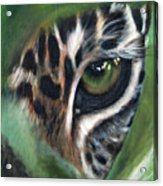 Watching You Watching Me Acrylic Print