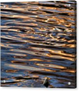 Water Abstract 4 Acrylic Print