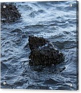 Water And A Rock Acrylic Print