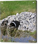 Water And Culverts Acrylic Print