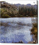 Water Body Surrounded By Greenery Acrylic Print