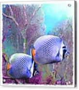 Water Boy 4 Acrylic Print