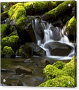 Water Cascade Acrylic Print
