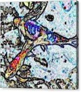 Water Color Koi Acrylic Print
