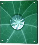 Water Crystal Acrylic Print