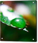 Water Diamonds 7  Acrylic Print