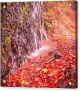 Water Dripping On The Rock Wall Acrylic Print