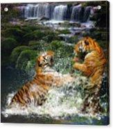 Water Fight Acrylic Print