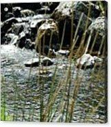Water Flowing 2 Acrylic Print