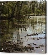 Water Garden Lake View Acrylic Print