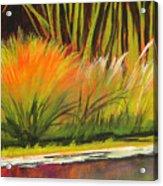 Water Garden Landscape 5 Acrylic Print