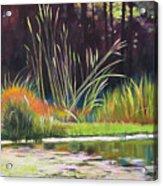 Water Garden Landscape Acrylic Print