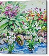 Water Garden Acrylic Print