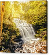 Water In Fall Acrylic Print