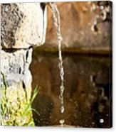 Water In Nature Acrylic Print