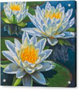 Water Lilies 12 - Fire And Ice Acrylic Print
