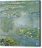 Water Lilies 21 Acrylic Print