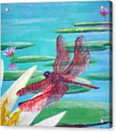 Water Lilies And Dragonfly Acrylic Print