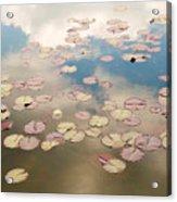 Water Lilies In Schoenbrunn Vienna Austria Acrylic Print