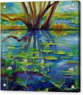 Water Lilies No 1. Acrylic Print