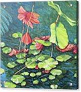 Water Lillies 1 Acrylic Print