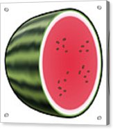 Water Melon Outlined Acrylic Print