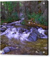 Water Never Tires Acrylic Print