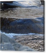 Water Ouzel, Middle Fork Kaweah River, Sequioa National Park Acrylic Print
