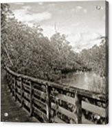 Water Path Acrylic Print