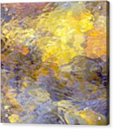 Water Reflection 1144 Acrylic Print