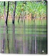 Water Reflections On Amazon River Acrylic Print