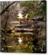 Water Stairs Acrylic Print