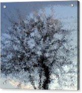 Water tree Acrylic Print