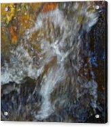 Water Whimsy 169 Acrylic Print