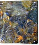 Water Whimsy 173 Acrylic Print