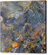 Water Whimsy 176 Acrylic Print
