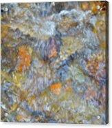 Water Whimsy 179 Acrylic Print