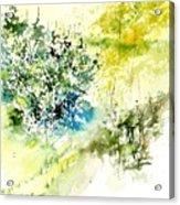 Watercolor 014042 Acrylic Print