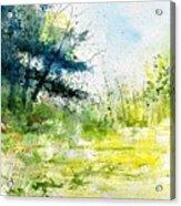Watercolor 111141 Acrylic Print