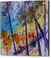 Watercolor  131108 Acrylic Print