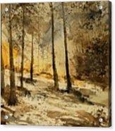 Watercolor  191106 Acrylic Print