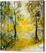Watercolor 210108 Acrylic Print by Pol Ledent