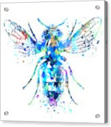 Watercolor Bee Acrylic Print
