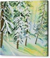 Watercolor - Colorado Winter Tranquility Acrylic Print