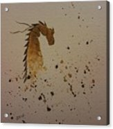Watercolor Dragon Acrylic Print by Ginny Youngblood