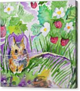 Watercolor - Field Mouse With Wild Strawberries Acrylic Print